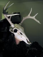 Wild hunt mask by damocles-shop