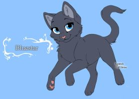 Warrior Cats Character Design templates Bluestar by Warriorcatscrazy