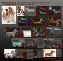 Basset hound tutorial by amokk20