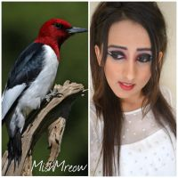 Redheaded Woodpecker inspired makeup by MishMreow