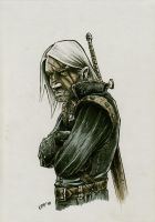 Geralt resentful by OFFO