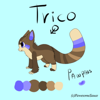 Trico Ref sheet by PawesomeSauce