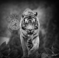 Time Ticking To Extinction by VintageWolf