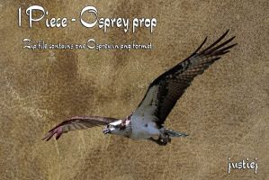 Cutout PNG - Osprey 3 by justiej