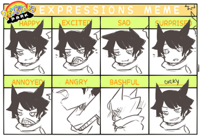 Expression Meme by rukoshi