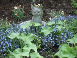 Pixie with blue flowers 2 by dottypurrs