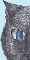 .:Crowfeather Bookmark:. by Spottedmoth321