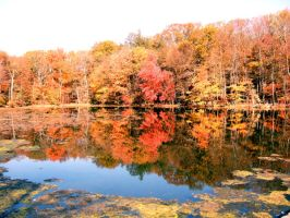Pocono Autumn 2 by jfkpaint