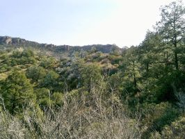 Mountain Landscape - Big Bend, TX by my-dog-corky