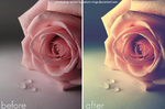 Photoshop Action 22 by saturn-rings