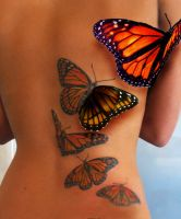 butterfly freedom by themoderndrugg