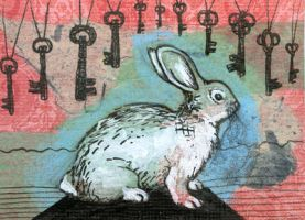 Hare ACEO by AshleighPopplewell