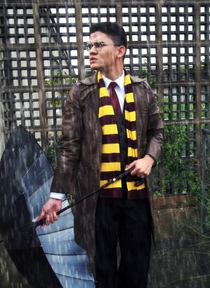 Harry Potter - The Auror Years III by DashingTonyDrake