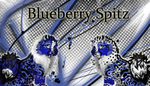Wajas - Banners -  Blueberry Spitz by Hence-Ferula