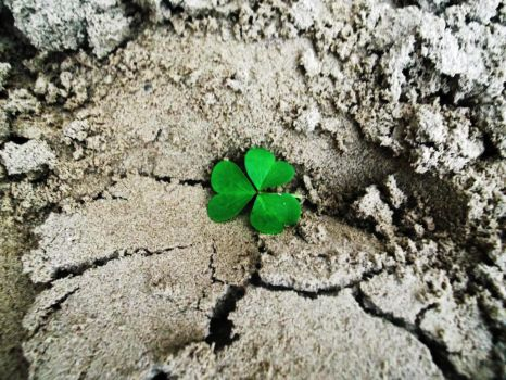 Luck in the sand by DianaVVolf