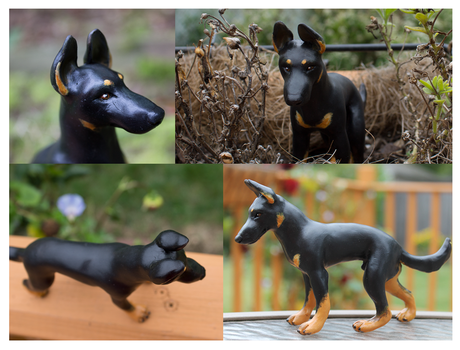 German Shepherd 01 Bicolor by Ingridda