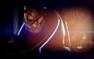 Garrus Vakarian - This Is War by RAiiNB0Wsharpii