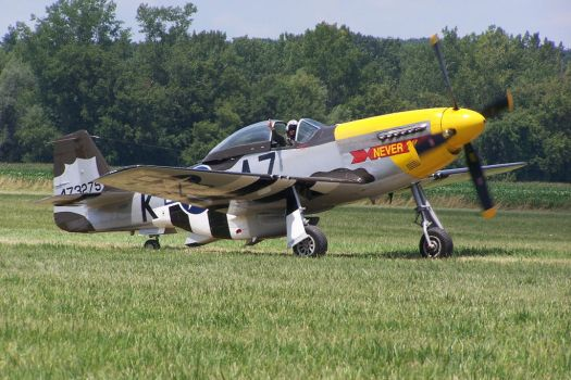 P-51 'Never Miss' Taxi by zammariangod