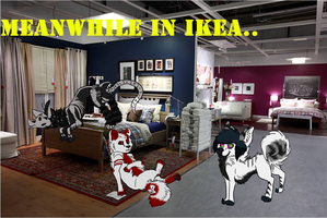 13 CONTEST PRIZE :: IKEA. by ImHerMonster