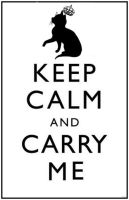Keep calm Cat by conceptually