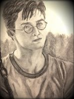 Harry potter OotP by dasimartinez