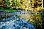 shady river stock bg by venomxbaby