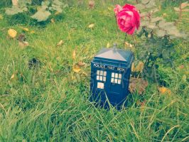 The Tardis In A Big World 2 by ArtistKM