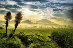 mounts of central java by nooreva
