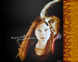 Harry and Ginny Wallpaper by EUNSHIHAE