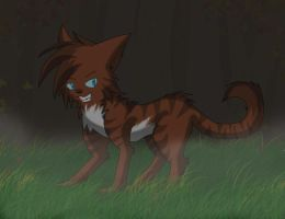 Hawkfrost-The Dark Forest by screms