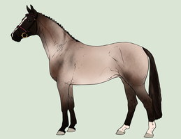 Design for horselover9900 by Anonymous-Shrew