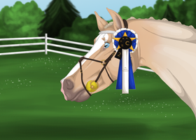 TGT 2015 - 2nd Advanced Show Jumping by Jessa-bee