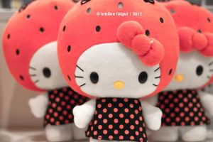 Hello Kitty Plushie: In Contrast by xTineLockhart