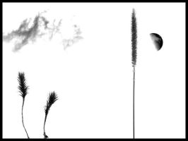 Grass, Cloud, Moon, Moss by LordSinrath