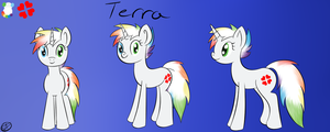 Terra Pony Reference Sheet by Terra-Aquis