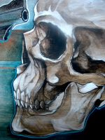skull close up 2 by arty147