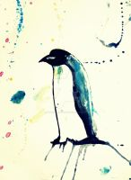 Splatter Penguin by PeppermintPictures
