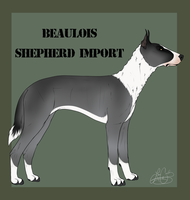 Beaulois Import 4 by Catzei
