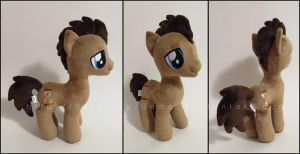 Plushie: Doctor Whooves - My Little Pony: FiM by Serenity-Sama