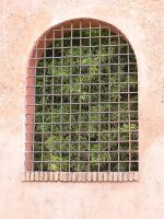 window 05 by Caltha-stock