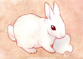 White Bunny Rabbit by DablurArt