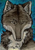 ACEO - Joon by Quoosa