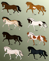 :: Pointables! Still OPEN 20 each. by Equine-Import-Centre