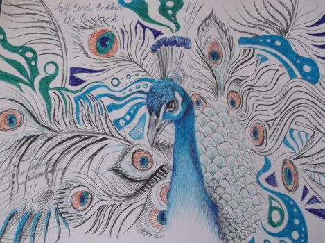 The peacock (WIP pen drawing) by Dustywallpaper