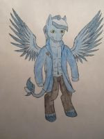.:RQ:. Anthro Tempest Stormcloud by handcuffs4ever