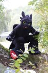 Toothless Cosplay - The Fish Predator by TheBandicoot
