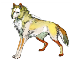 Nameless wolf by Kipine