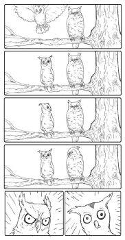 Silly Owl and Angry Owl by Metal-Truncator