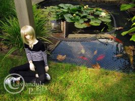 Relaxing at the pond by Lavandula-BJD