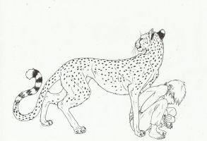 The Cheetah's Boy by MaiaCarlson